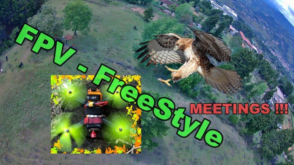 Kiss RC40i - FPV-FREESTYLE Explorer des lieux et rencontrer un bel oiseau!