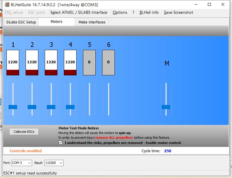 BLHeliSuiteMotors_210121_1.png.7a7ede7da1f92d1726e79554a2a6df61.png