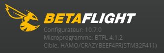 betaflight_version.JPG.dacd0354a9e0daab24a7d35bb2533710.JPG