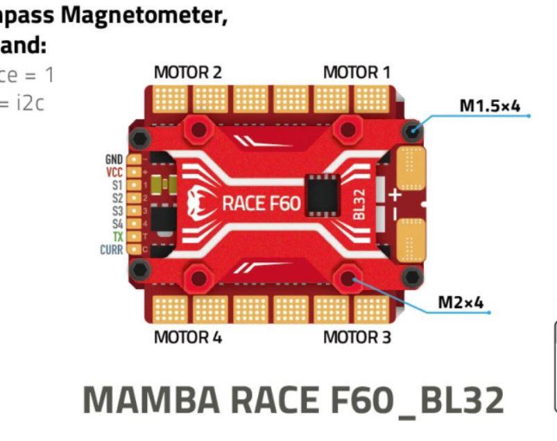 Mamba Race.JPG